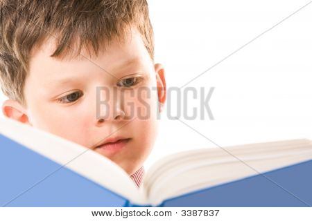 Reading The Book