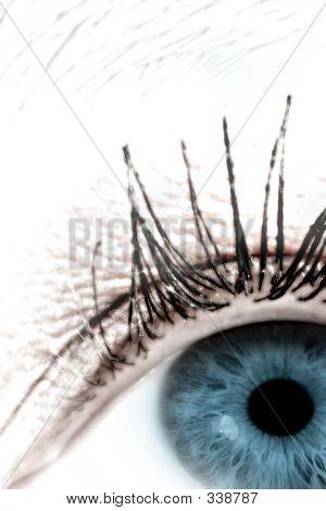 Auge # 4