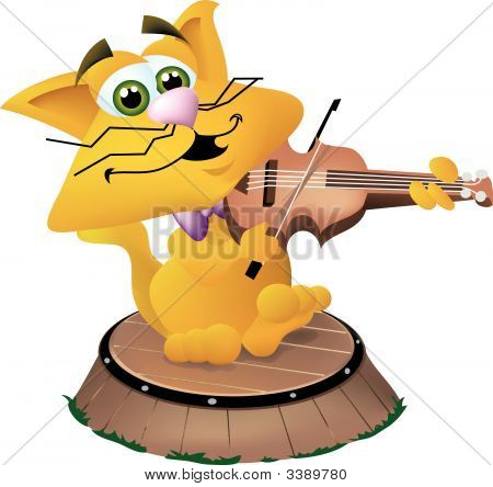 Gato & violín