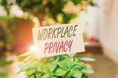 Word Writing Text Workplace Privacy. Business Concept For Protection Of Individual Privacy Rights In poster