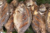 Fried Fish In Street Market Fry Until Crispy Staple Food Of Asian People Eat Delicious poster