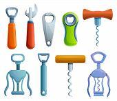 Bottle-opener Icons Set. Cartoon Set Of Bottle-opener Vector Icons For Web Design poster