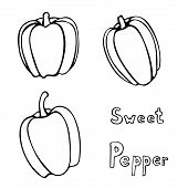 Set Of Vector Hand Drawn Outline Bell Peppers. Black Contour Doodle Illustration In Line Art Style.  poster