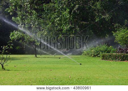 Garden lawn water sprinkler.