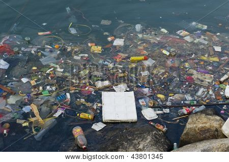 Rubbish polluting lake