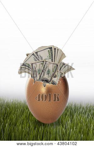 401 Retirement Nest Egg.