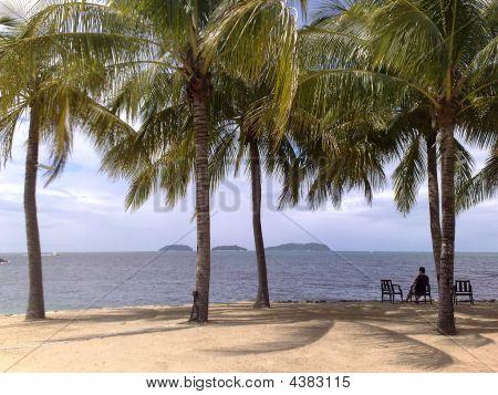 Praia Kota Kinabalu