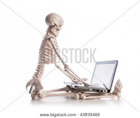 Skelett, die Arbeiten am laptop