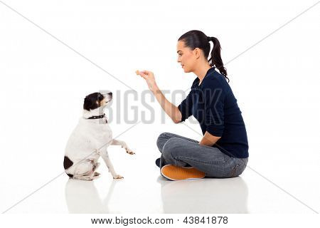 pretty young woman training a dog isolated on white background