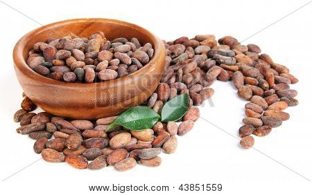 Cocoa beans in bowl with leaves, isolated on white