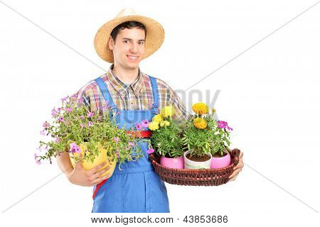 Male gardener with a straw hat holding flower plants isolated on white background