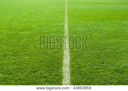 Line on the soccer field