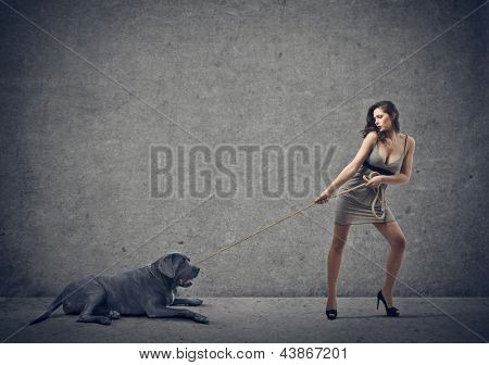 beautiful woman drags big dog