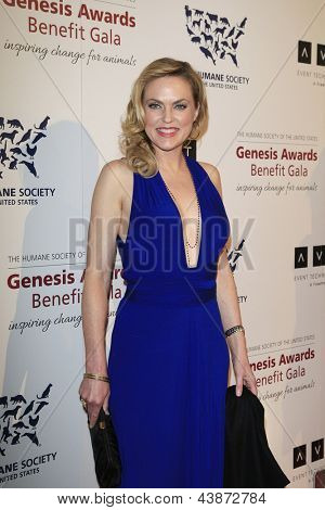 BEVERLY HILLS - MAR 23: Elaine Hendrix at  the 2013 Genesis Awards Benefit Gala at The Beverly Hilton Hotel on March 23, 2013 in Beverly Hills, California