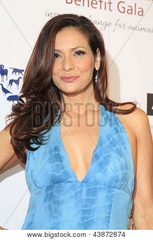 BEVERLY HILLS - MAR 23: Constance Marie at  the 2013 Genesis Awards Benefit Gala at The Beverly Hilton Hotel on March 23, 2013 in Beverly Hills, California
