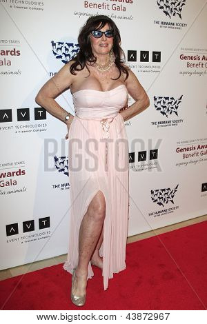 BEVERLY HILLS - MAR 23: Edy Williams at  the 2013 Genesis Awards Benefit Gala at The Beverly Hilton Hotel on March 23, 2013 in Beverly Hills, California
