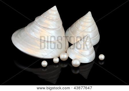 Mother of pearl seashell group with loose pearls over black background.