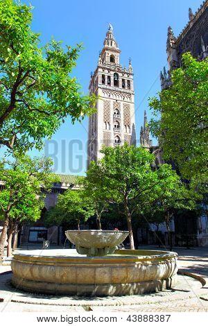 Patio de la Catedral y la Giralda campanario, Sevilla