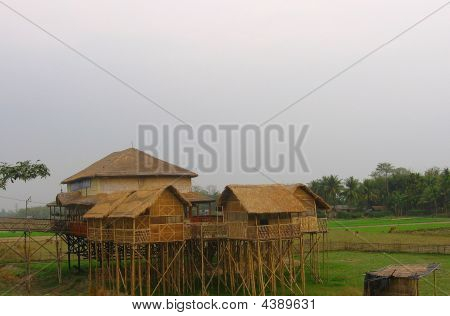 Stilt House On Bamboo Stem