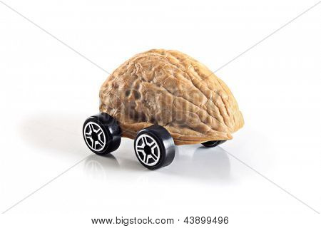Photo of Nuts shell car
