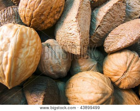 Photo of Nuts macro