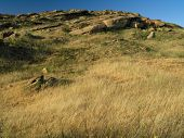 Grass Against Sky poster
