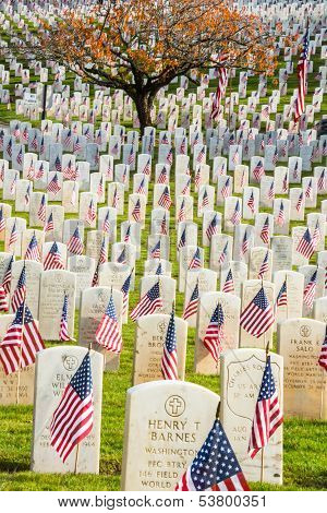 Headstones With Flags In War Veterans Cemetery