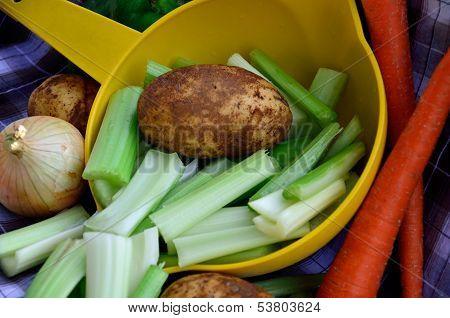 Common vegetables