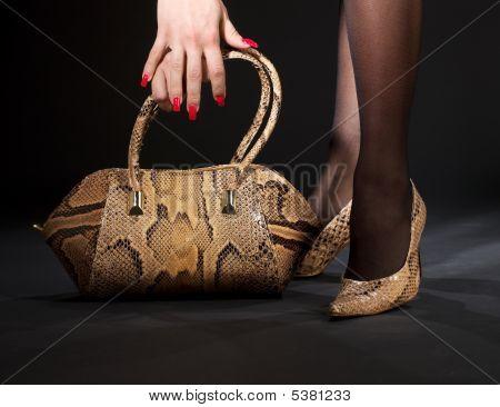 Schlangenleder Schuhe und Handtasche