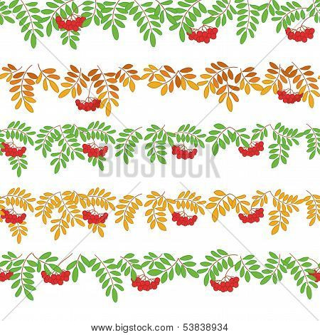 Rowanberry, seamless