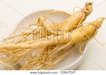 Korean fresh ginseng