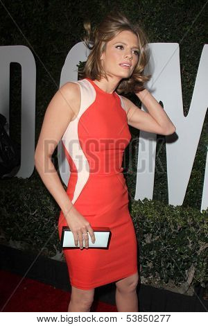 LOS ANGELES - NOV 11:  Stana Katic at the ???