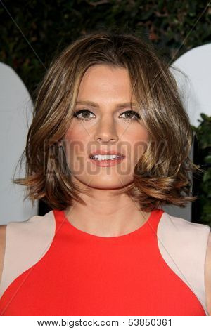 LOS ANGELES - NOV 11:  Stana Katic at the