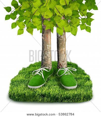 Green Carbon Footprint Concept