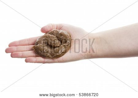 Hand Holding Fake Excrement