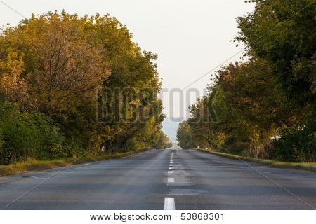 View of an empty tarmac country road along trees and against clear sky