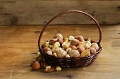 image of hazelnut  - Assortment of different nuts  - JPG
