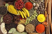 pic of fenugreek  - Spices and herbs on wooden background - JPG