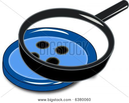 Magnifying Button.