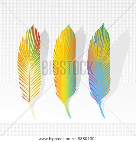graphic feathers