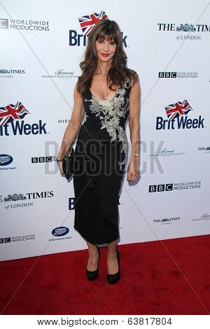 BODHILOS ANGELES - APR 22:  Justine Glenton at the 8th Annual BritWeek Launch Party at The British Residence on April 22, 2014 in Los Angeles, CA