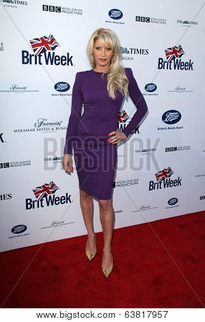 BODHILOS ANGELES - APR 22:  Dani Behr at the 8th Annual BritWeek Launch Party at The British Residence on April 22, 2014 in Los Angeles, CA