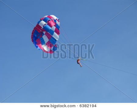 view of paraseling in the sky by the sea
