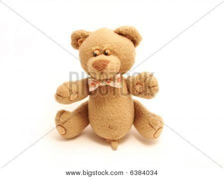 Sly Male Bear