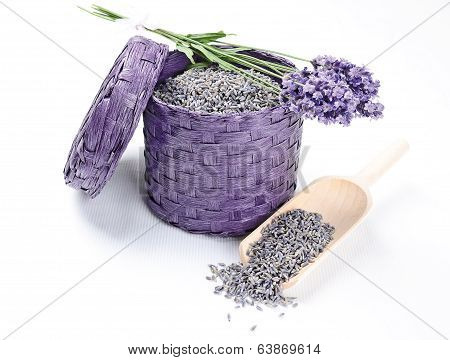 Fresh And Dry Lavender Flowers
