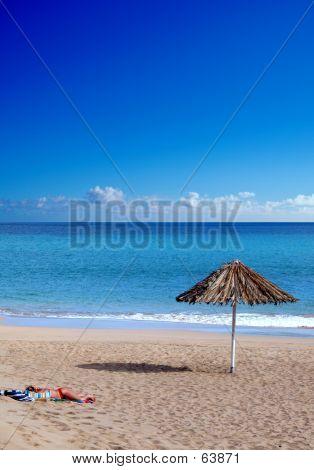 Alone OnThe Beach