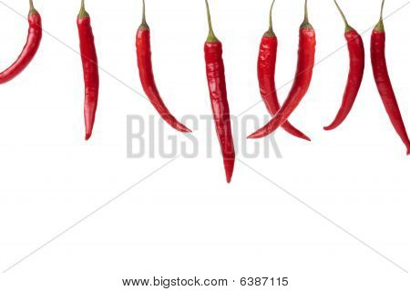 Hanging Red Chili Peppers In A Row