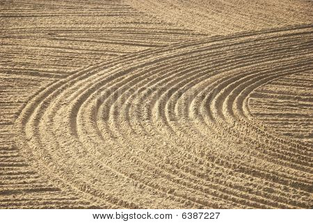 beach furrows