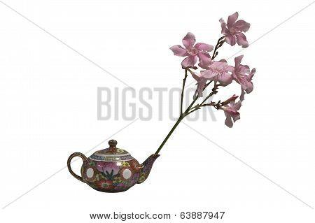 Sweet Oleander over tea pot