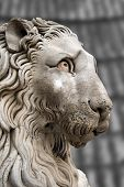 pic of genova  - Sculpture of a stone lion in cathedral of St - JPG